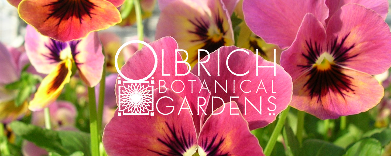 Olbrich Botanical Gardens Logo Design